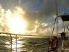 coralsea 40