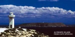 Althorpe Island from Cape Spencer