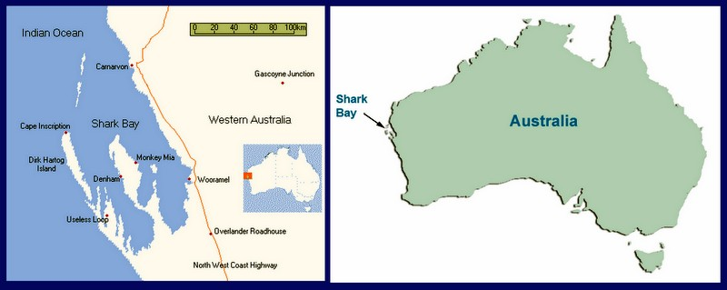 Life Afloat - Shark Bay Map