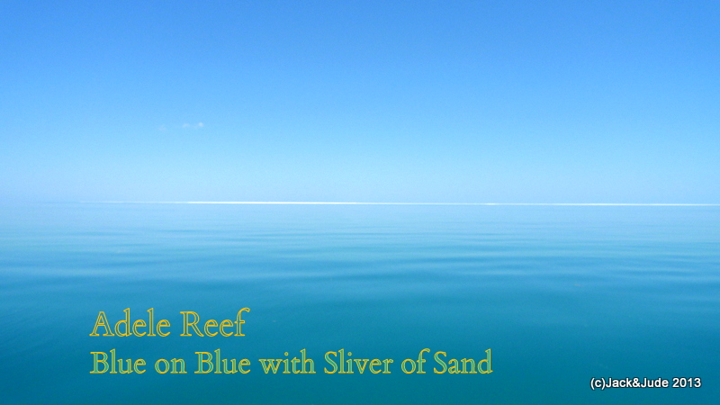 Adele Reef - Blue on Blue world