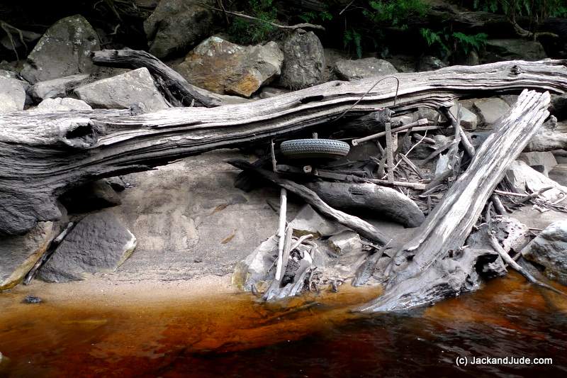 The rivers were low, exposing earthen banks loaded with fallen tree and a few other surprises like a twisted wheelbarrow