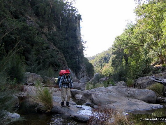 Upper reaches of Guy Fawkes River