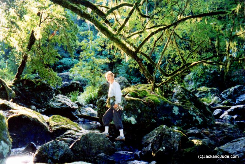 Washpool Creek Richly fragrant wet forest