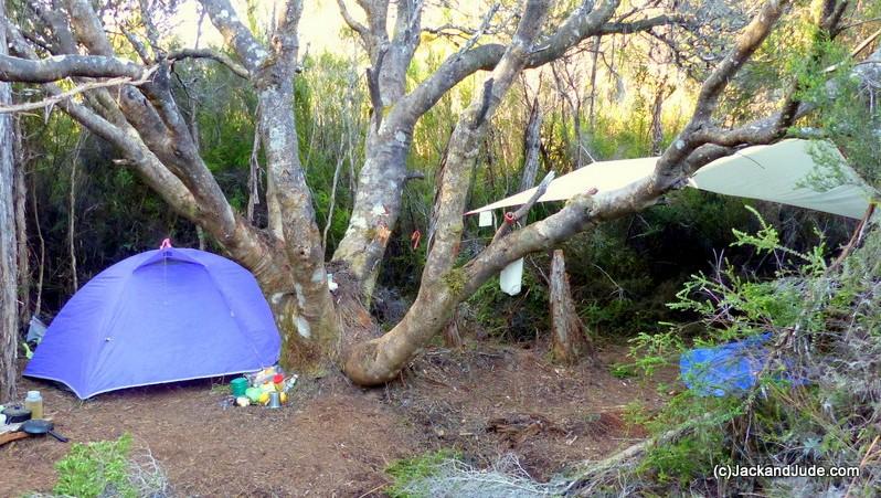 Camp Banksia