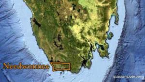 needwonnee map