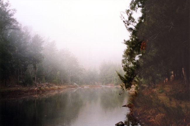 Sara River
